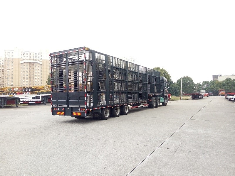 What Are Several kinds of Trailer?