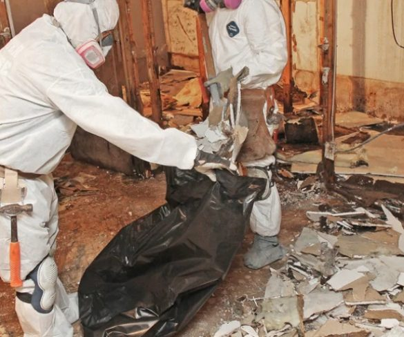 How to choose Best Mold Abatement Company?