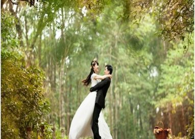 Best Ideas for Your Wedding