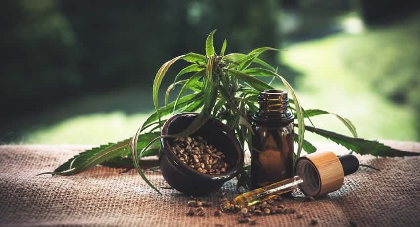 How to Use Terpenes to Enhance Your Life